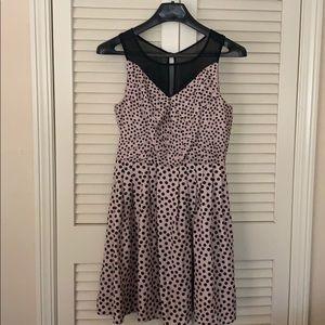 Cute fit any season polka dot dress